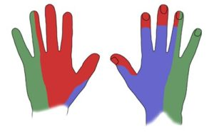 Hormigueo en la punta de los dedos de la mano derecha